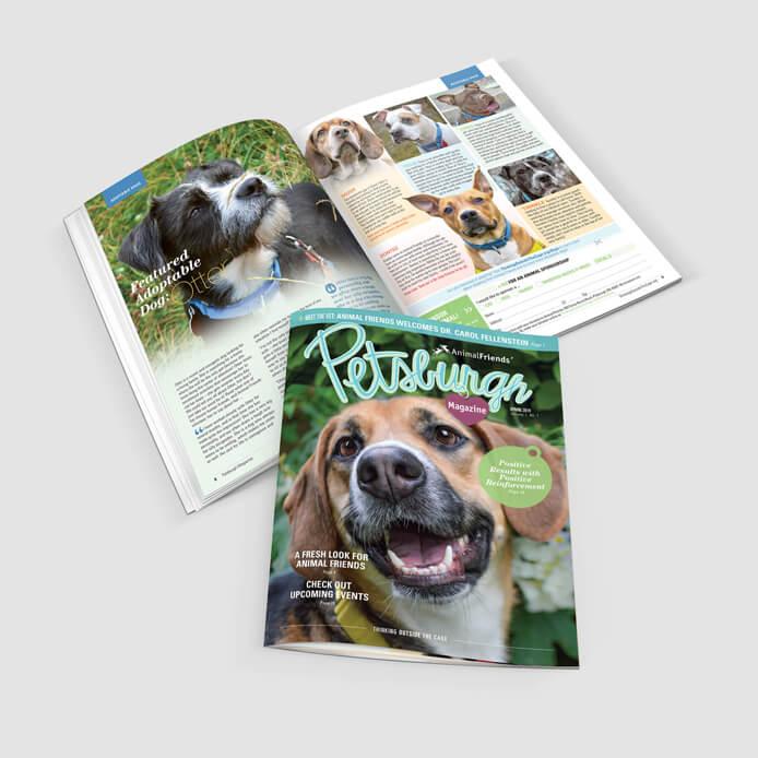 Magazine & Catalog Design