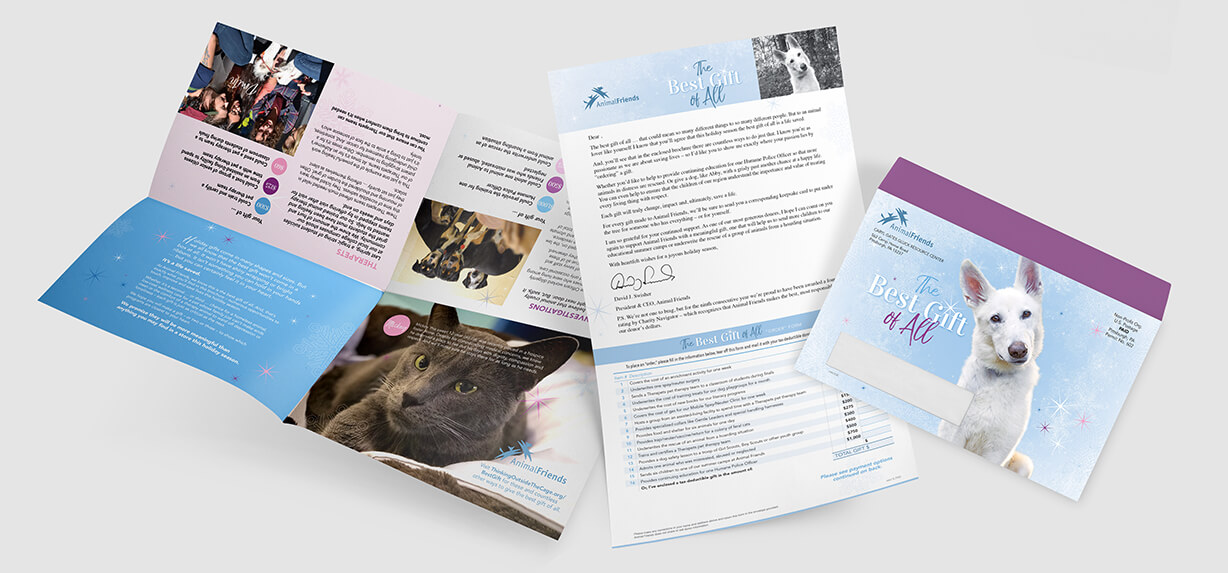 Animal protection fundraiser direct mail campaign