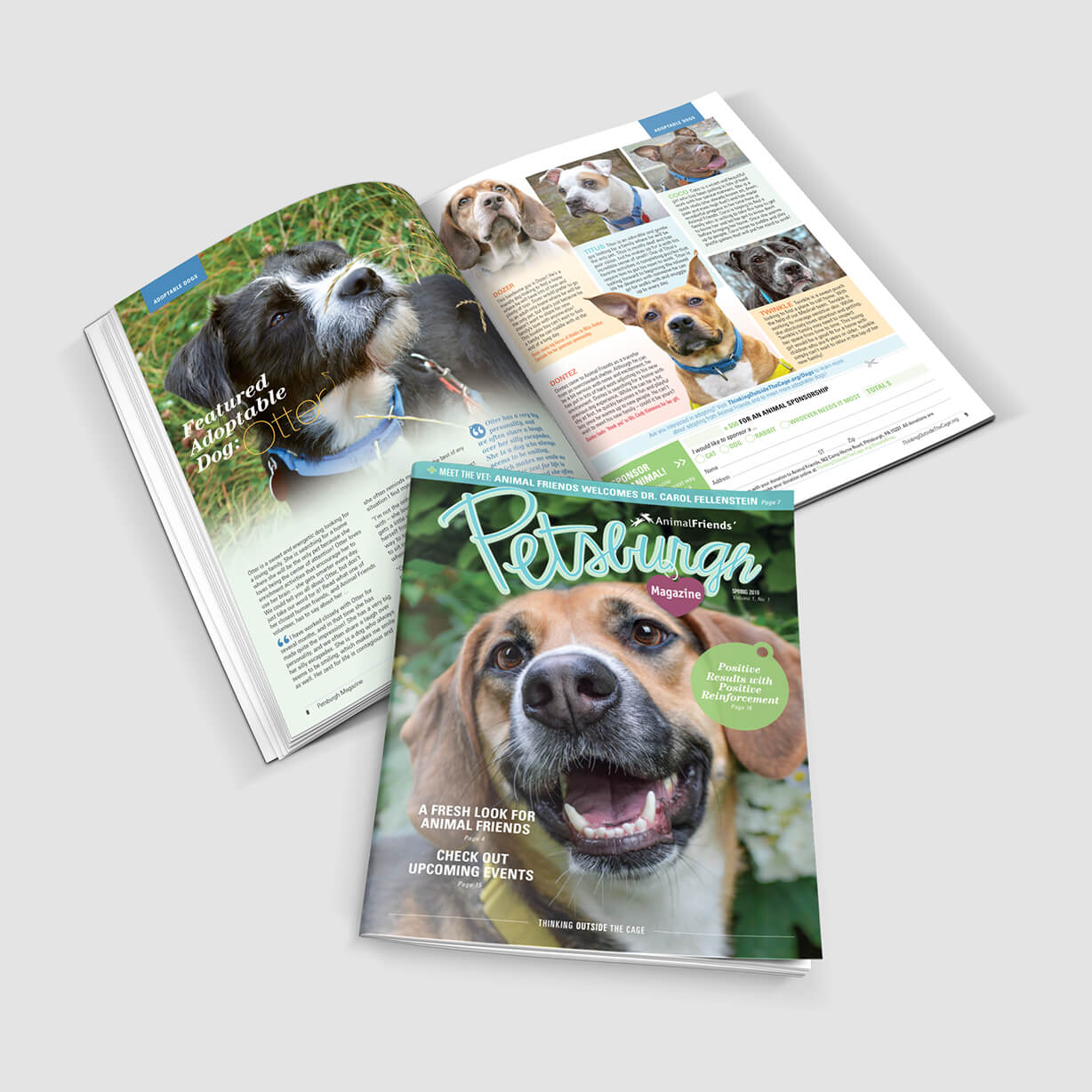 Beautiful newsletter and magazine for animal shelter