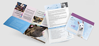 Animal protection fundraiser direct mail appeal