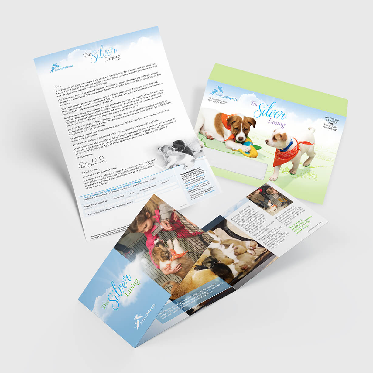 Letter package annual campaign mailer with full color graphics